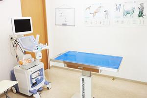 のだ動物病院photo
