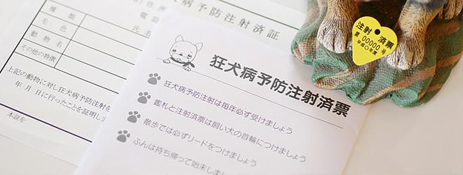犬猫の予防接種